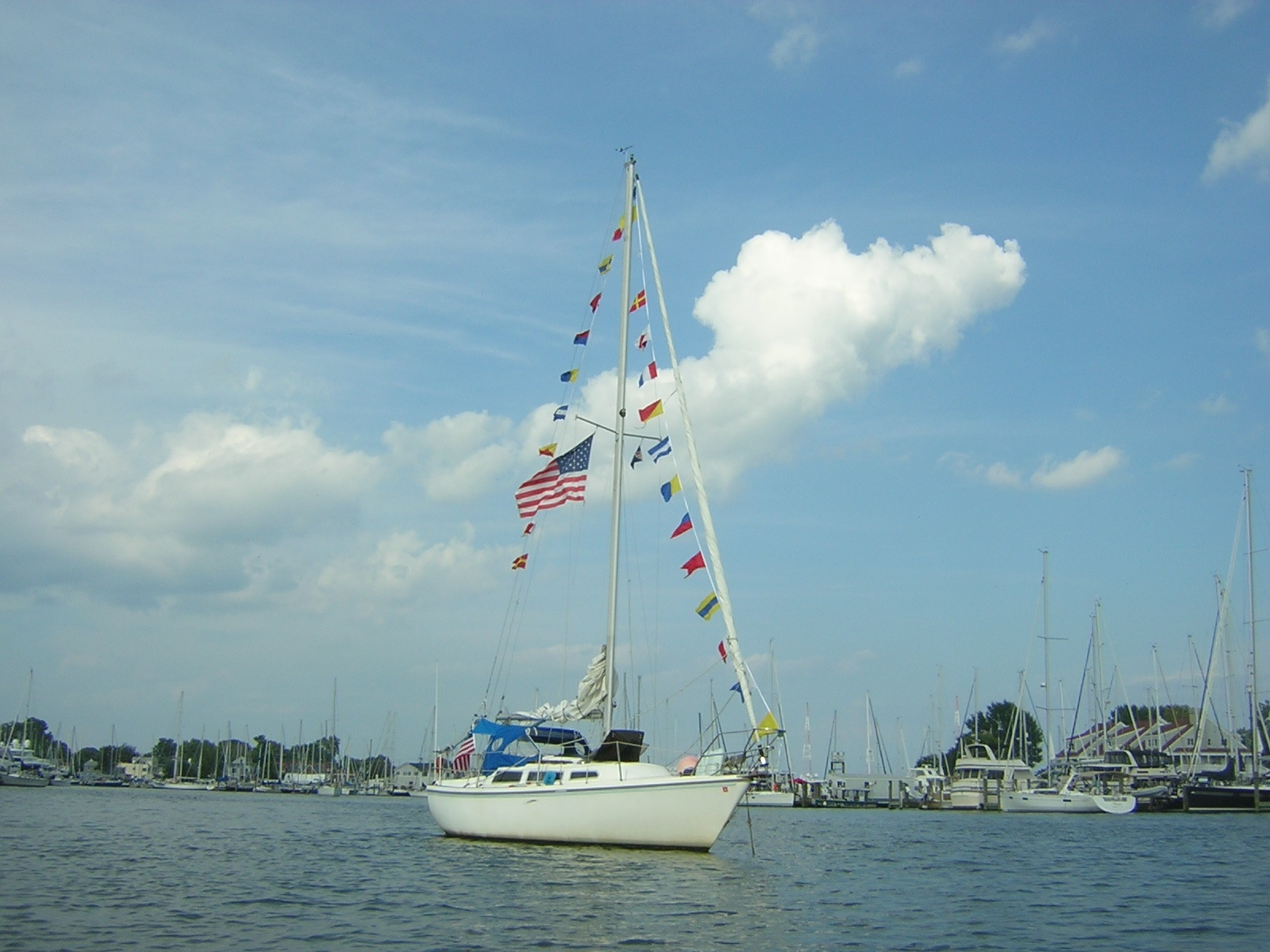 Sailboat dressed for Labor Day with colorful flags. At Back Creek, MD