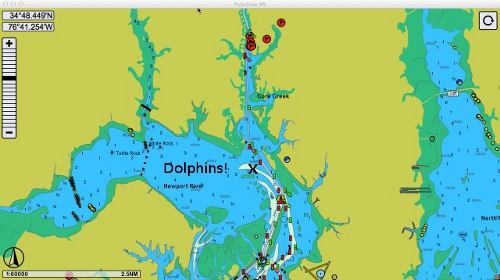 dolphin-map