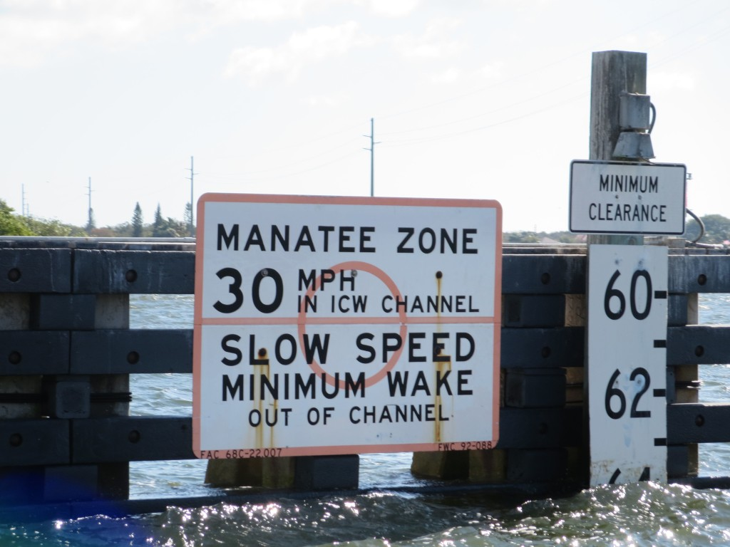 We are seeing manatee warning signs, but no manatees.